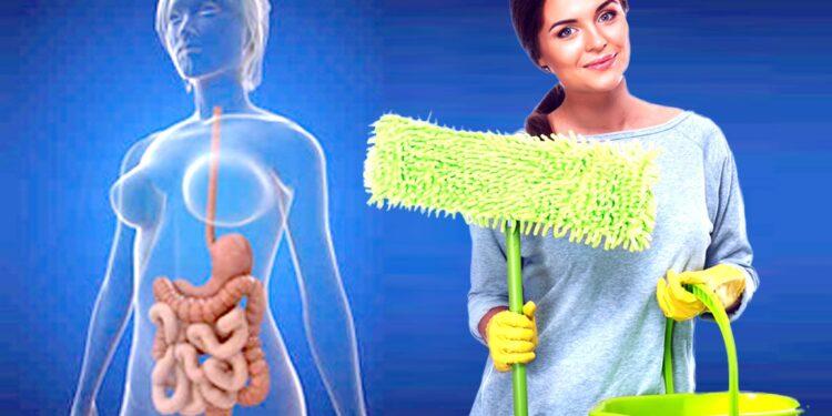 очищение организма с кфс